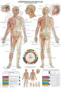Bodu Acupuncture Chart